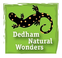 Dedham Natural Wonders